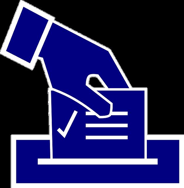 voto consulta