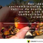 Realidades socioambientales del aceite de palma y los bio-combustibles en Colombia